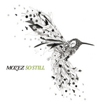 MOZEZ - So Still (Front Cover)