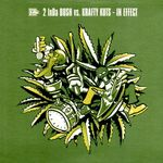 2 INDA BUSH - In Effect (Front Cover)