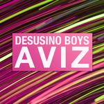 DESUSINO BOYS - Aviz EP (Front Cover)