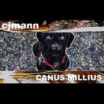 CJMANN - Canus Millius (Front Cover)