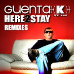 Here 2 Stay (remixes)
