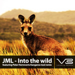 JML - Into The Wild (Peter Horrevorts rework) (Front Cover)