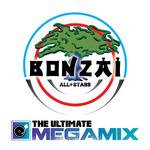 The Ultimate Megamix (unmixed tracks)