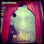 AEROBIUM - Saturated (Front Cover)