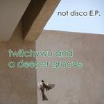 Not Disco EP
