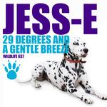 29 Degrees & A Gentle Breeze