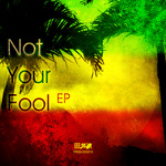 THEORY/MR FOUL/MORPHY & FLATLINERS/THE UNTOUCHABLES - Not Your Fool EP (Front Cover)