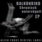 Chronisch Untervögelt EP