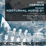 WOLDMAN, Andy/BIOTIC/DARK ELECTRIC/SARAH C - Nocturnal Audio 01 (Front Cover)