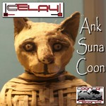 DELAY - AnkSunaCoon (Front Cover)