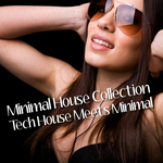 VARIOUS - Minimal House Collection: Tech House Meets Minimal (Front Cover)