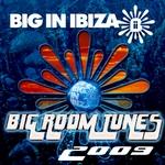 Big Room Tunes 2009