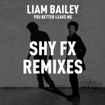 LIAM BAILEY - You Better Leave Me (Remixes) (Front Cover)