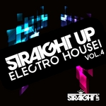 Straight Up Electro House! Vol 4