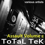 Total Tek Assault 2