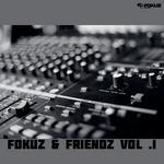 VARIOUS - Fokuz & Friends Vol 1 (Front Cover)