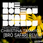 SUBMORPHICS feat CHRISTINA TAMAYO - The Moment That Builds (Front Cover)