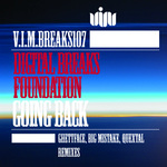 DIGITAL BREAKS FOUNDATION - Going Back (Front Cover)
