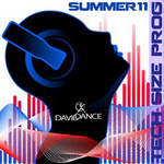 VARIOUS - Tech Size Prog Summer 2011 Compilation (Front Cover)