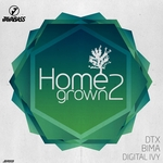 DTX/BIMA G/CARLO/DIGITAL IVY - Homegrown 2 (Front Cover)