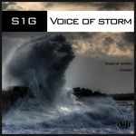 S1G - Voice Of Storm (Front Cover)