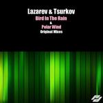 LAZAREV & TSURKOV - Bird In The Rain (Front Cover)