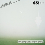 EVGENY LIGHT - A Bird Of Divine (Front Cover)