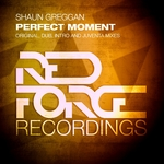 GREGGAN, Shaun - Perfect Moment (Front Cover)