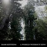 A World Without Zinc
