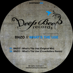 BNZO - What's The Use (Front Cover)