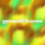 VARIOUS - Yesacid House (Front Cover)
