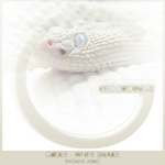 JUNG, Thomas - White Snake (Front Cover)