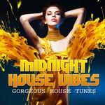 VARIOUS - Midnight House Vibes Vol 4 (Gorgeous House Tunes) (Front Cover)