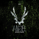 ANGEL - Distorted Thinking (Front Cover)