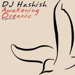 DJ HASHISH - Awakening (Front Cover)