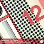VARIOUS - Balkanians Volume 12 (Front Cover)