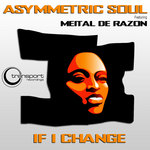ASYMMETRIC SOUL feat MEITAL DE RAZON - If I Change (Front Cover)