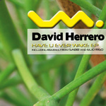 HERRERO, David - Have You Ever Wake EP (Front Cover)