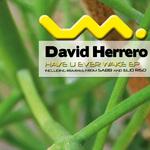 HERRERO, David - Have You Ever Wake EP (Back Cover)