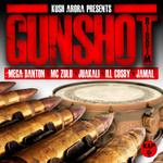 KUSH ARORA - Gunshot Riddim (Front Cover)