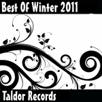 VARIOUS - Best Of Winter 2011 (Front Cover)