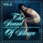 VARIOUS - The Sound Of Silence Vol 2 (Taste Of Erotic Ambient Lounge & Chill Out) (Front Cover)