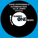 HOPPERMAN, David/AUTOMANN feat OLLIE JAMES - Crytical (Front Cover)