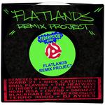 VARIOUS - Flatlands Remix Project (Front Cover)