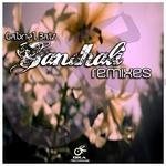 Gandhali (remixes)