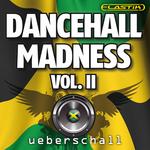 UEBERSCHALL - Dancehall Madness Vol II (Sample Pack Elastik Soundbank) (Front Cover)