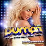 Pump It Vol 4 (Worldwide Edition)