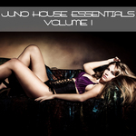 VARIOUS - Juno House Essentials Volume 1 (Front Cover)