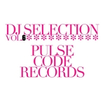 VARIOUS - DJ Selection Vol 6 (Pulse Code Anniversary) (Front Cover)