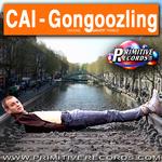 Gongoozling